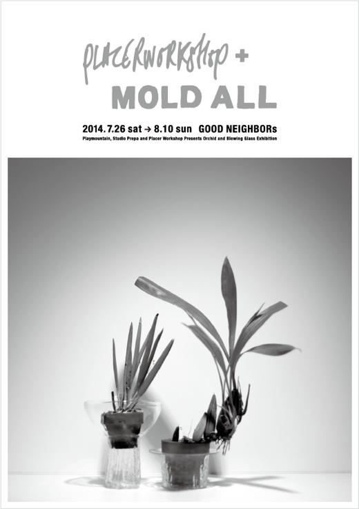 PLACER WORKSHOP + MOLD ALL 2014.7.26  – 8.10